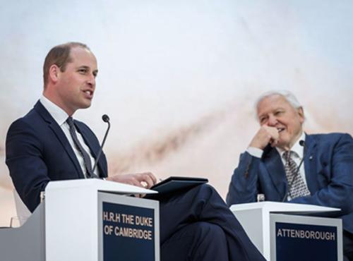 Prince William at the 2019 World Economic Forum in Davos